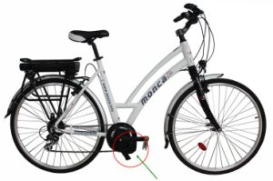Popular Middle Motor Ebike with Great Powerful Feel pictures & photos