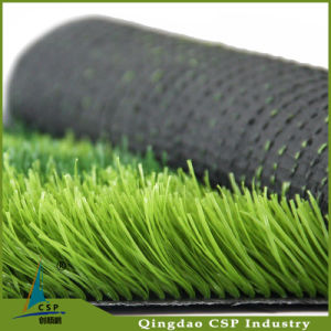 Natural Grass Carprt for Football pictures & photos