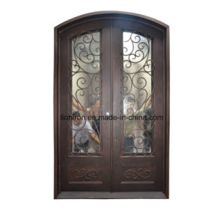 Contemporary Custom Wrought Iron Entry Doors pictures & photos