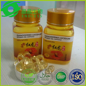 Organic Certification Glossy Ganoderma Spore Oil Soft Capsule pictures & photos
