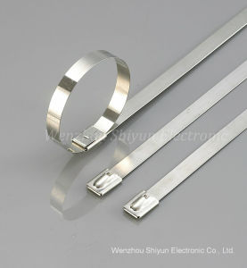 Self-Locking Stainless Steel Cable Ties -Naked pictures & photos