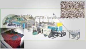 Plastic Carpet Extrusion Line pictures & photos