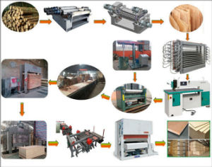 Plywood Making Line pictures & photos