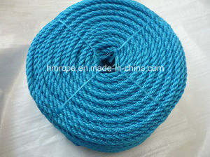 PP Monofilament Twisted Rope (PE 3 strands twisted rope) pictures & photos