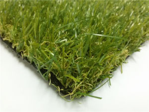 Amgrass Turf and Artificial Grass with Top Class (amf41625L) pictures & photos