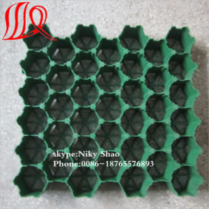 High Quality Plastic Grass Grid Pavers with HDPE Material pictures & photos