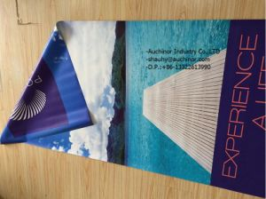 High Quality Custom Design Feather Flags, Telescopic Beach Flag Banner pictures & photos