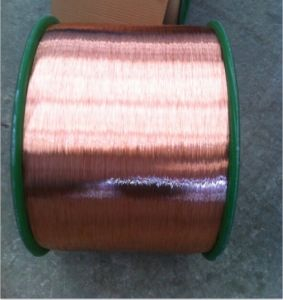 Copper Clad Steel Conductor pictures & photos