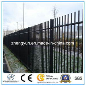 Powder Coated Blunt Top Fence Garden Fence pictures & photos