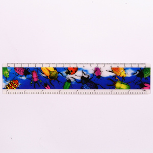 Kids Promotional 3D Ruler pictures & photos