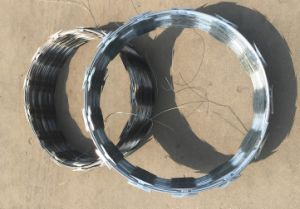 Factory Supplier Cbt65 Razor Wire with Ss304 and HDG pictures & photos