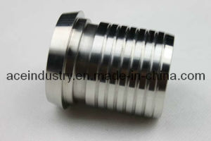 Stainless Steel Fitting Pipe Male/Hose End pictures & photos