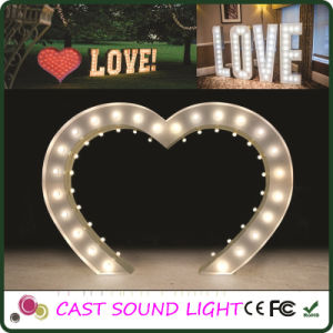 Fancy LED Letter Sign Lights Multi-Shape Wedding Decoration pictures & photos