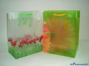 Many Types of Colors and Flowers Accompanied by a Transparent Gift Bags and Shopping Bags