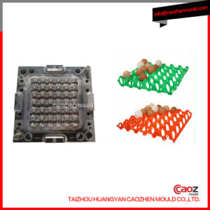 Plastic Injection Egg Tray Mould in Huangyan