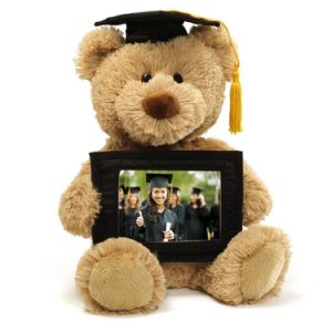 Custom Made Super Soft Stuffed Graduation Plush Teddy Bear pictures & photos