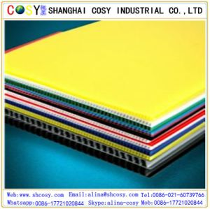 PP Corrugated/Hollow Sheet for Decoration pictures & photos