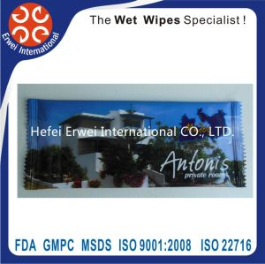 OEM Glass / Screen Cleaning Wet Wipes pictures & photos