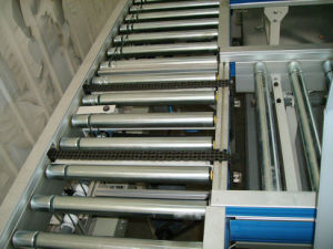 Roller Conveyor/Side Pusher/Sorting Covneyor pictures & photos