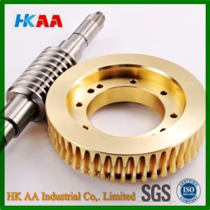 Brass Worm Gear, Mini Worm Gear, Worm Gear Reducer pictures & photos