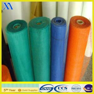 High Quality E Type Fiberglass Mesh 10X10mm/90g/110g/125g (XA-FM011) pictures & photos