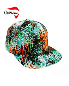 Promotion Print Baseball Caps (wyy01/02) pictures & photos