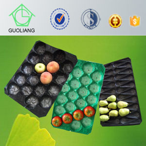 Made in China Fresh Produce Packaging Mango Pomegranate Melons Plastic PP Trays pictures & photos