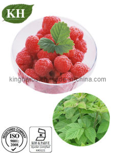Raspberry Ketone Glucoside 5%; Anthocyanidins 20% 25% Raspberry Extract pictures & photos