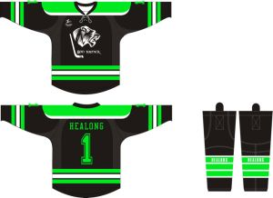 Healong Fashion Design Garment Sublimation Men′s Ice Hockey Jersey pictures & photos