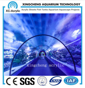 Large Clear UV Acrylic Tunnel Oceanarium pictures & photos