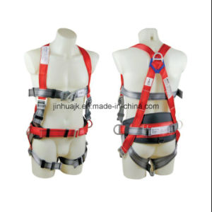 Safety Harness (JE146142) pictures & photos