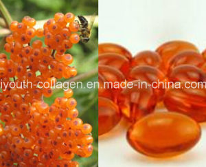 GMP, 100% Natural Organic Wild Seabuckthorn Fruit Oil Soft Capsule, Anti-Cancer, Kill Cancer Cells, Oxidation, Prevent Brain Cell and Death Alzheimer′s pictures & photos