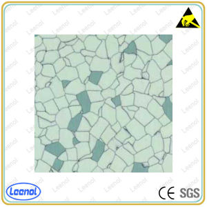 Ln-02 Antistatic Floor Use for Cleanroom pictures & photos
