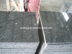 Chinese Butterfly Green Granite for Floor Wall Tile pictures & photos