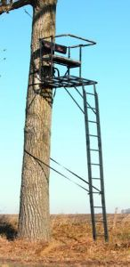 Tree Ladder Stands