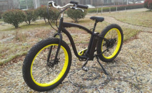 500W Fat Tire Strong Electric Bike (hummer) pictures & photos