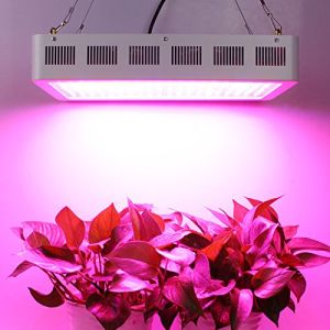 1000W High-Power LED Plant Grow Light pictures & photos