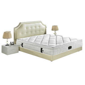 Beds Bedroom Furniture Modern Mattress Spring Mattress pictures & photos