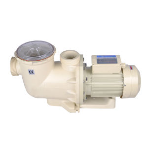 China OEM Factory of Swim Pool Filter Water Pump pictures & photos