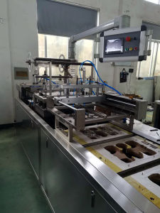 China Tray and Paper Packing Machine for Toothbrush/Battery/Toy Packing Auto pictures & photos