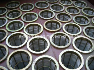 Ss304L Filter Cage with Venturi pictures & photos