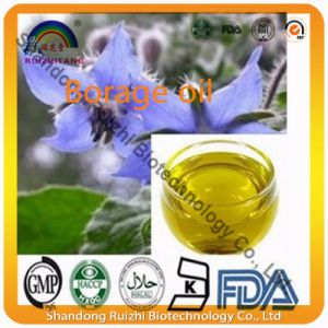 Natural Borage Oil Contents 99%with Low Prices pictures & photos