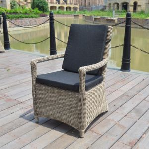 Outdoor Patio Furniture Dining Half Round Rattan Chair for Dining Set (J5351HR) pictures & photos