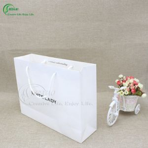 Beautiful Paper Shopping Bag Manufacturer (KG-PB062)