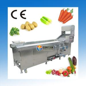 PT-2000 High Efficient Vegetable Blanching Machine, Fruit Blender Machine pictures & photos