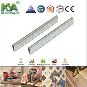 20ga Fasco 4 Galvanized Industrial Staples pictures & photos