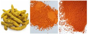 High Quality Turmeric Extract 100% pictures & photos