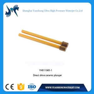 Water Jet Direct Drive Pump Parts Small Ceramic Plunger pictures & photos