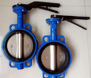 Lug Type Butterfly Valve (D71X) pictures & photos