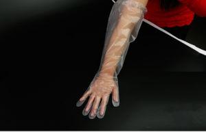 Polyethylene Shoulder Length Ob Gloves pictures & photos